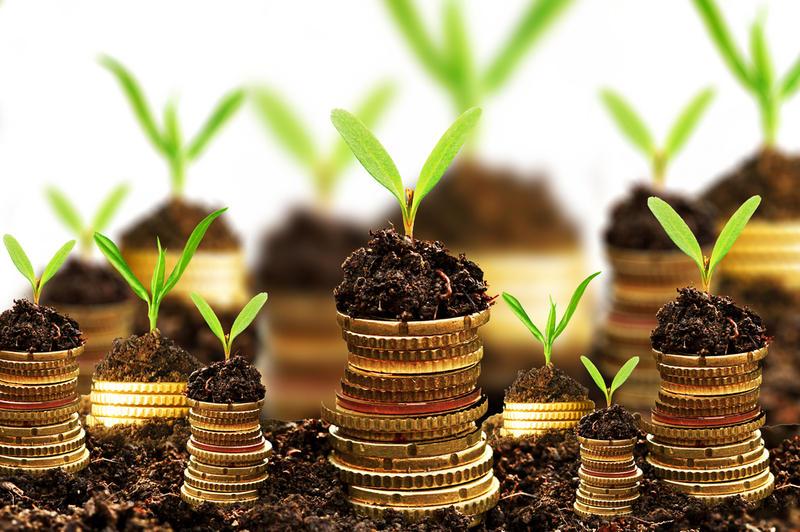 Что покупать, в условиях обвала рубля, и куда вложить деньги?