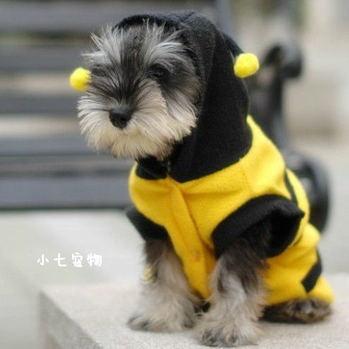 карнавальный костюм для кошек и собак