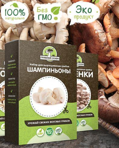 Набор для выращивания грибов — Грибной Сезон: обзор товара