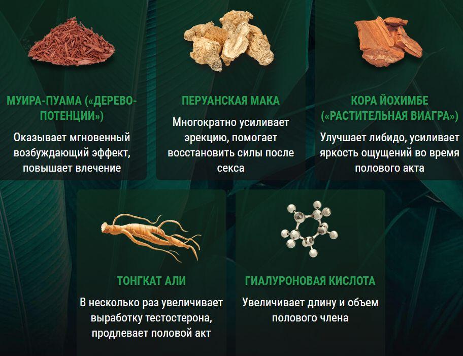 Состав Гигамакс