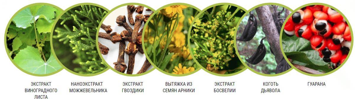 Состав Биокомплекс